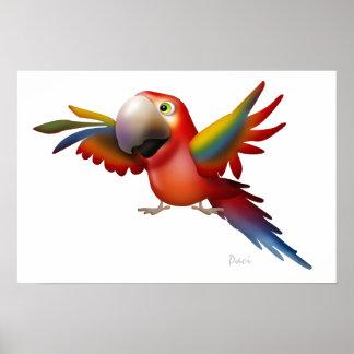 Macaw - SRF Print
