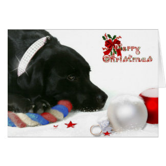 Madison den svart Labrador julkortet Hälsningskort