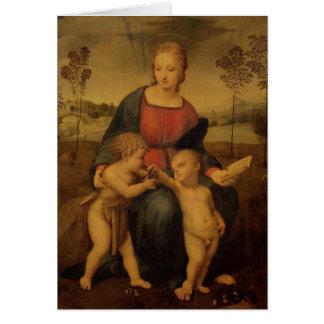 Madonna av steglitsen, c.1506 hälsningskort