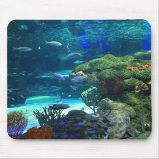 Magical korallrev musmatta