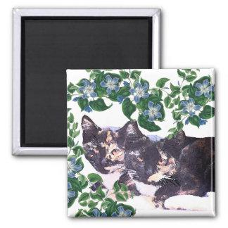 Magnet för djur för katter för