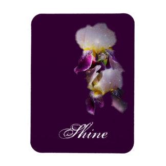 Magnet för två Irises