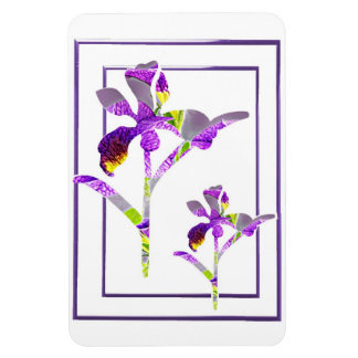 ~-magnet för två Irises Magnet