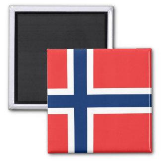 Magnet med flagga av norgen
