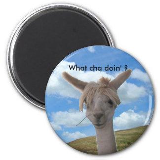Magnet - nyfiken Alpaca Magnet Rund 5.7 Cm