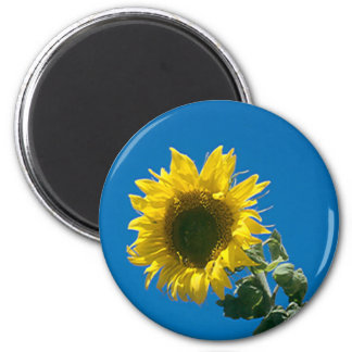 Magnet - solros magnet rund 5.7 cm