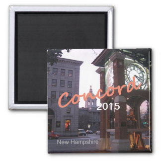Magneter för souvenir för harmoniNew Hampshire