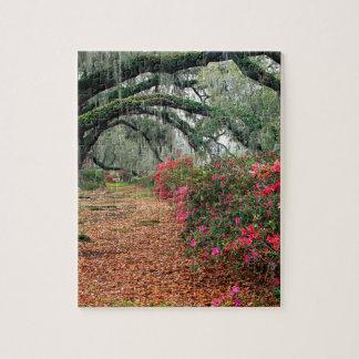 Magnolia Charleston för trädAzaleasOaks Pussel