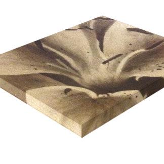 Magnolia i kol canvastryck