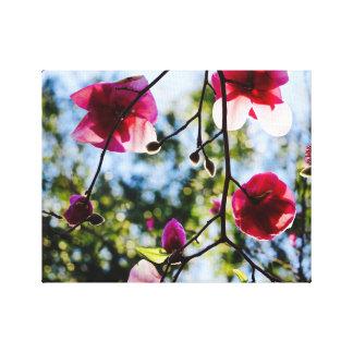 Magnolia - kanfaskonst - tropisk ö canvastryck