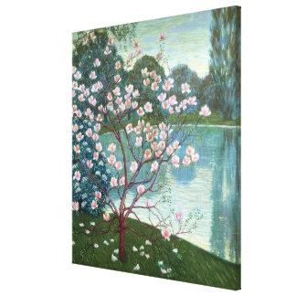 Magnolia (olja på kanfas) canvastryck