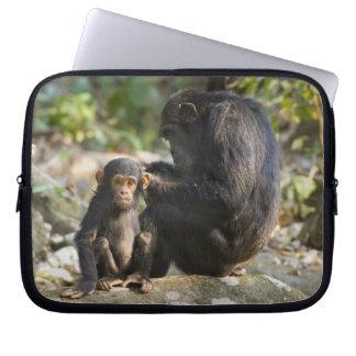 Mahale berg nationalpark, Tanzania Laptop Sleeve