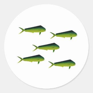 Mahi Mahi fisk - delfin - Dorado Runt Klistermärke