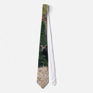 Maine älgårsgammal djurunge slips
