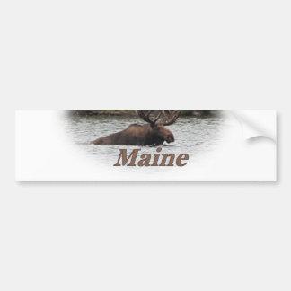 Maine tjurälg bildekal