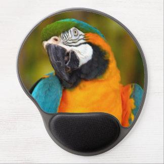 Majestätisk Macaw Gel Musmatta