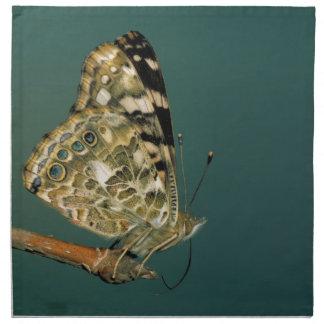 Målad damfjärilsnärbild tygservett