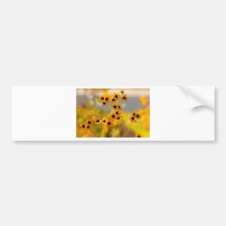 Målade Coreopsistinctoriavildblommar Bildekal