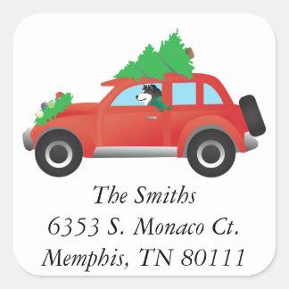 Malamute som överst kör en bil med julgranen fyrkantigt klistermärke