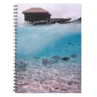 Maldiverna som dyker fisken för anteckningsbok