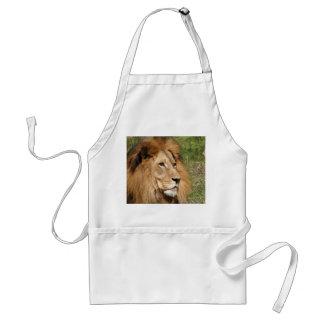 Male afrikanskt lejont förkläde