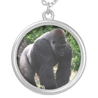 Male gorilla för Silverback som går head down.jpg Silverpläterat Halsband