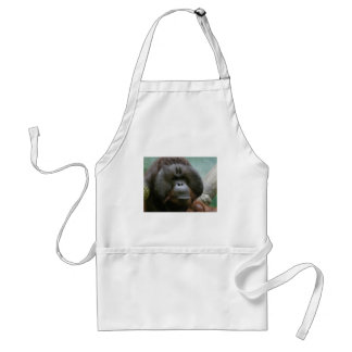 male orangutan förkläde