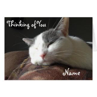 Mall för anpassade för kort för Momo katthälsning