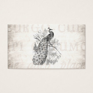 Mall för illustration för påfågel för vintage1800s visitkort