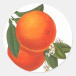 Mall för konst för orangevintagelåda runda klistermärken