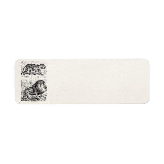 Mall för tigrar för vintagetigerillustration returadress etikett