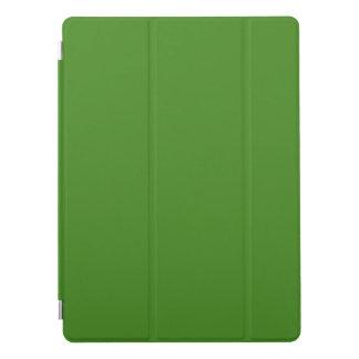 Mallen BLANK tillfogar färgtext avbildar anpassade iPad Pro Skydd