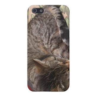 Mammor iPhone 5 Cases