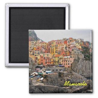 Manarola italienmagnet magnet