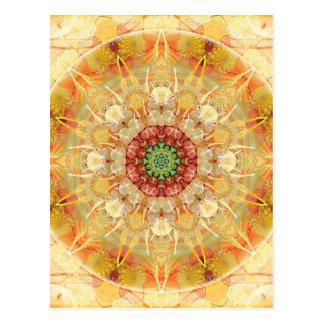 Mandalas för tider av övergång 12 vykort