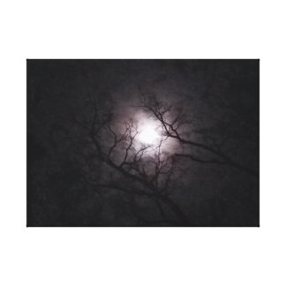 Måne på skymningen canvastryck