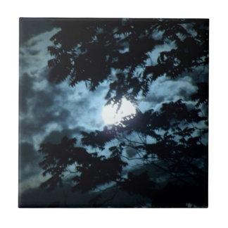 Månen exponerar natten bak trädgrenar kakelplatta