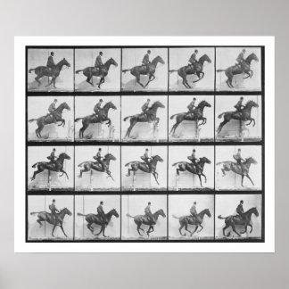 Manen och hästen som hoppar ett staket, pläterar 6 posters