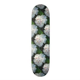 Mång- dyrbar pionSkateboard Skateboard Bräda 20 Cm