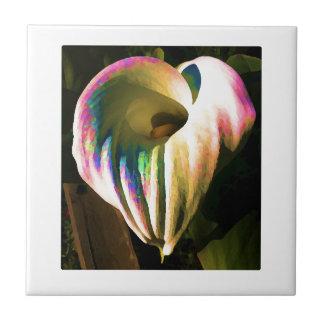 Mång--färgad Callalilja Kakelplatta