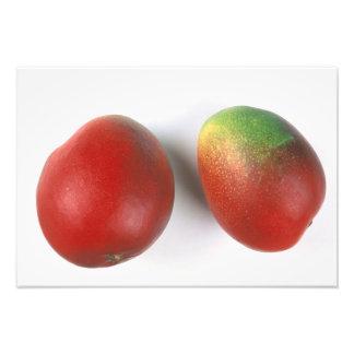 Mango för använda i USA endast.) Fototryck