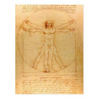 Människaanatomi, Vitruvian man av Leonardo Da Vykort