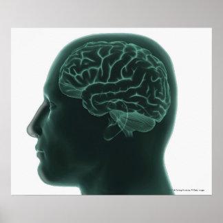 Människahuvudet profilerar in visning hjärnan poster