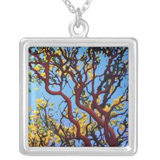 Manzanita i höst silverpläterat halsband