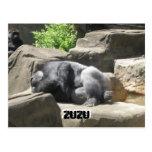 march7 927, ZuZu, ZuZu Vykort