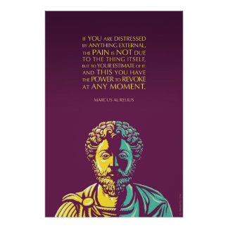 Marcus Aurelius citationstecken: Driva som ska Poster