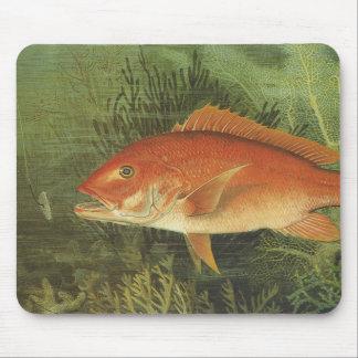 Marin- liv för vintage, röd Snapperfisk i hav Musmatta