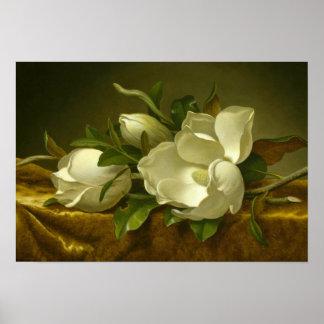 Martin Johnson Heade - Magnolias på guld- sammet Poster