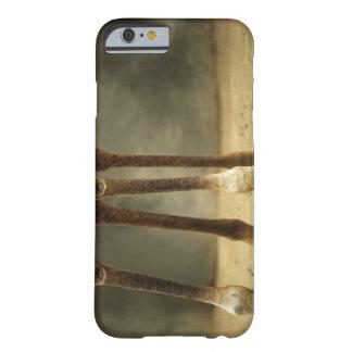 Masaigiraffet, den låga vinkeln beskådar av ben, barely there iPhone 6 fodral