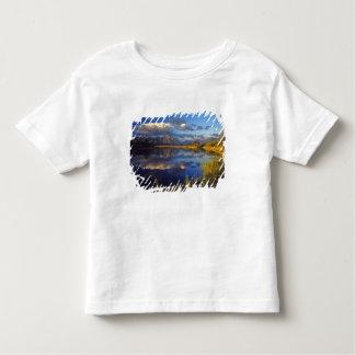 Maskinonge sjö i Waterton sjöarnationalpark 3 T-shirts